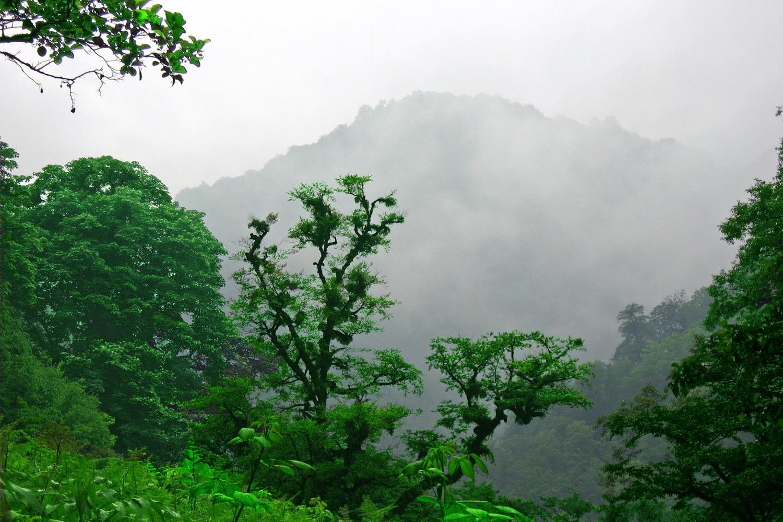 ارتفاعات دوهزار رامسر