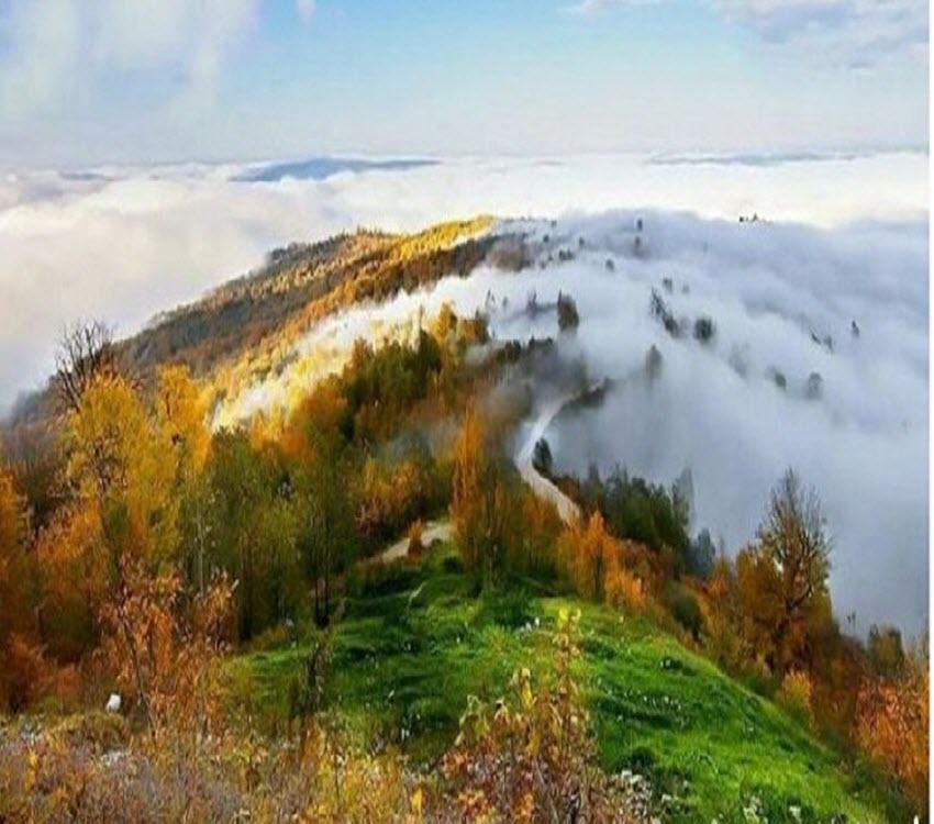 جنگل های مازندران در شمال