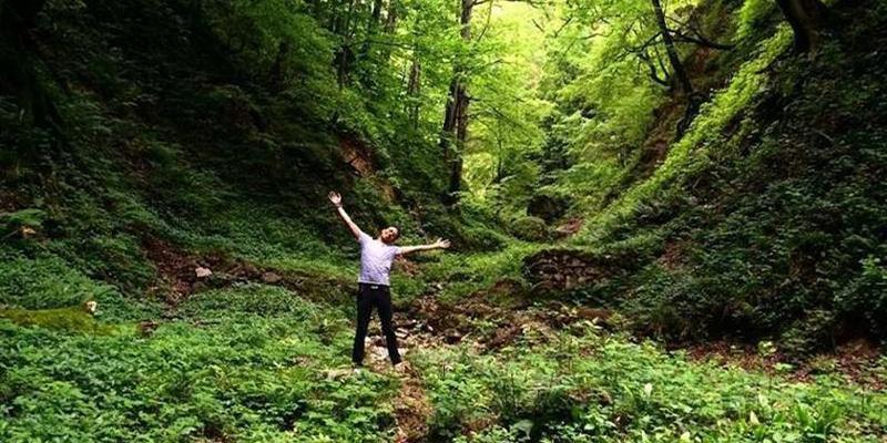 جنگل-های معروف رامسر