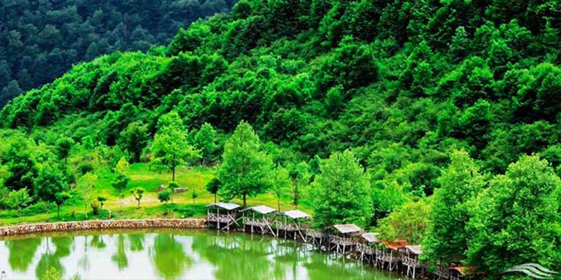 دریاچه قو؛ یکی از زیباترین مناطق رامسر