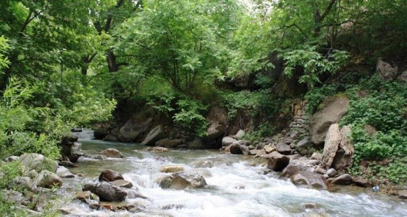 سفری به برغان؛ سرزمین جادوی سبز ایران