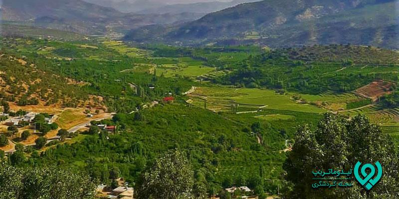 جاهای-دیدنی-کوهمره-سرخی-شیراز