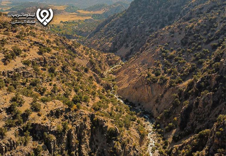 جنگل-کوهمره-سرخی-شیراز
