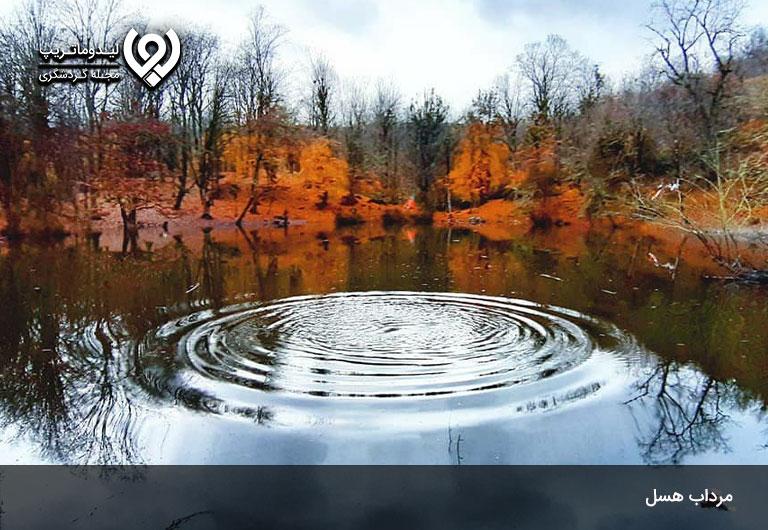 مرداب-هسل،-تابلویی-رنگارنگ-در-قلب-جنگل