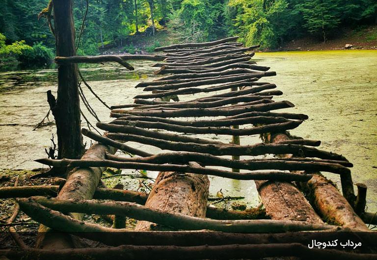 مرداب-کندوچال،-یکی-از-خاصترین-جاهای-دیدنی-چالوس