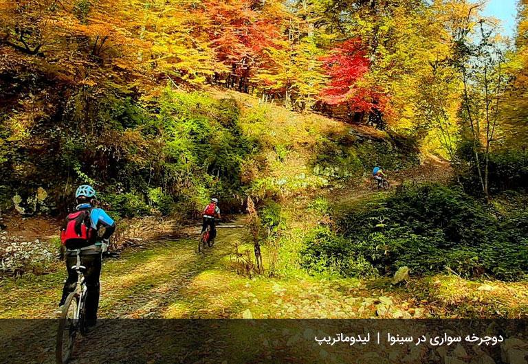 مسیر-دوچرخه-سواری-جنگل-سینوا-جنگل-سینوا-چالوس
