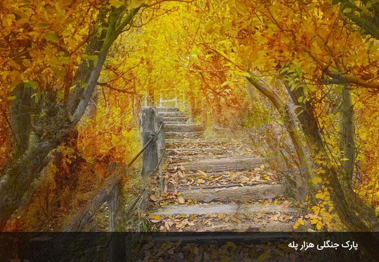پارک-جنگلی-هزار-پله-رامسر،-یکی-دیگر-از-پارک-های-جنگل-های-اطراف-رامسر