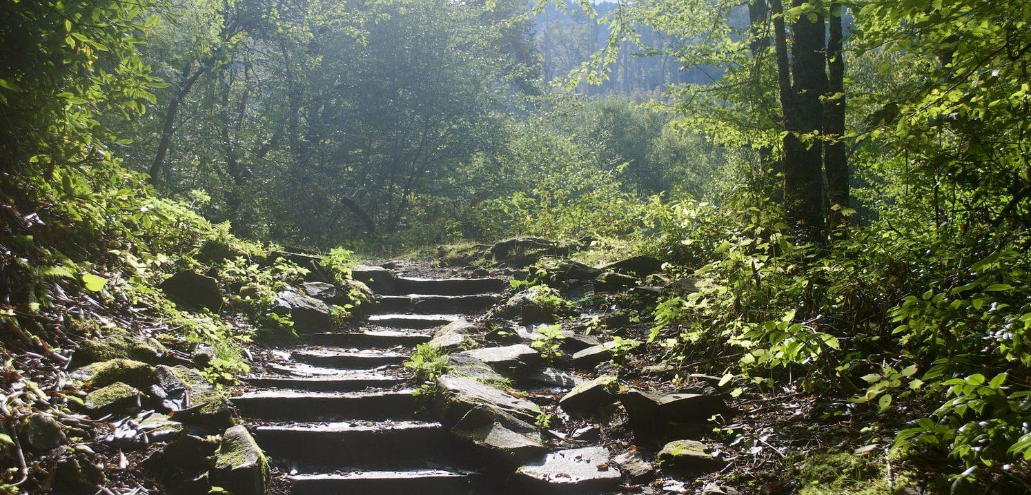 پارک جنگلی هزار پله رامسر