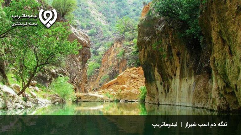 تنگههای-رویایی-شیراز