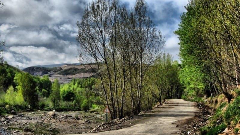 پارک جنگلی خیاوا چایی طبیعت گردی و معرفی مناطق بکر اردبیل