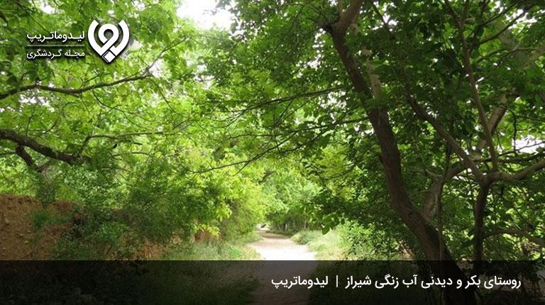 روستای-آب-زنگی-شیراز