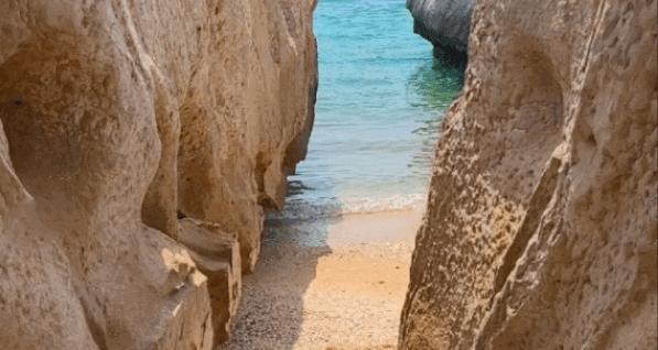 ساحل سنگ مرغان جزیره هرمز