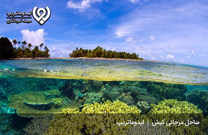 ساحل-مرجانی
